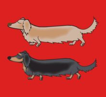Long haired Doxies by Diana-Lee Saville