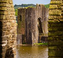 Caerphilly Castle by mlphoto