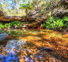 Fern Tree Pool by Luke Griffin