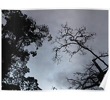 Goth Trees Poster