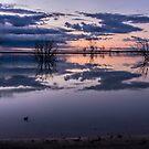 Lake Menindee by Chris Brunton