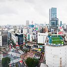 Shibuya Crossing by Paul Ryan