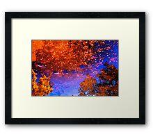 POND FISH UNIVERSE Framed Print