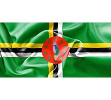 Dominica Flag Photographic Print