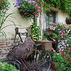 Pedal Power versus Flower Power by Marilyn Grimble