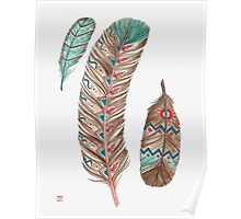 Feathers 3 Peach and Blue Poster