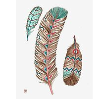 Feathers 3 Peach and Blue Photographic Print