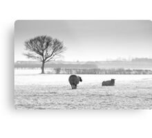 Snow scene with sheep Metal Print