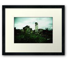 Flower Power - Lomo Framed Print