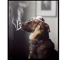 """Alex"" the Smoking Police Dog Photographic Print"