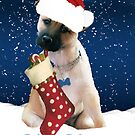 Christmas Card With Digitally Painted Puppy And Stocking by Moonlake