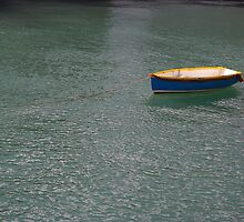 Lonely Little Row Boat by tashasphotos