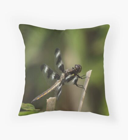 Dragonfly Reads Morning Newspaper Throw Pillow