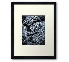 Gothic Forest Framed Print