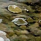 Stones In A Winter Stream by Wib Dawson