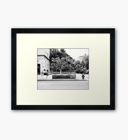 A Tree in the City Framed Print