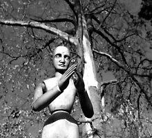 Gustaf the Wooden Man by Shari Rucker