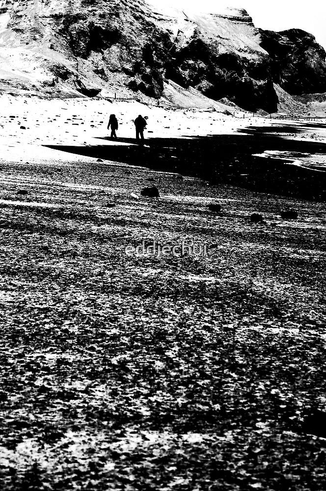 Walkers by eddiechui