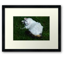 """A little too dramatic?"" Framed Print"