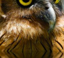 The Buffy Fish Owl (Bubo ketupu) TShirt Sticker