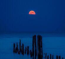 Moon by Jarede Schmetterer