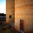 The Silo Door by Paul Earl