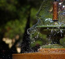 Splash by Paul Earl