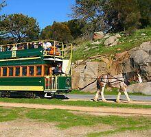 Karni and the Tram, Granite Island. by Gail Mew