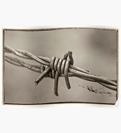 Barbed Too Poster