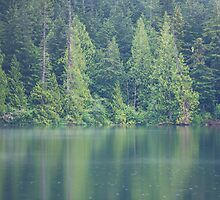 Lizard Lake Reflections by Carrie Cole