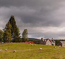 Rural Idyll by Sergey Simanovsky
