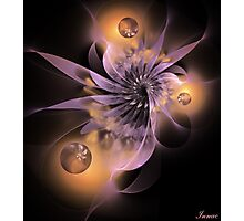 Bokeh flower Photographic Print