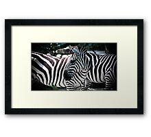 Lost In Stripes Framed Print