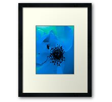 insect in blue flower Framed Print
