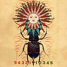 sun-beetle 1 by RichardSmith