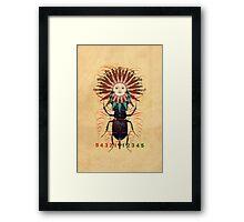 sun-beetle 1 Framed Print