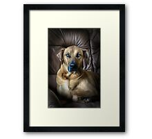 A PROUD PORTRAIT Framed Print