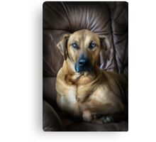 A PROUD PORTRAIT Canvas Print