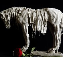 Kirsty Collection-Horse 1 by Michael West