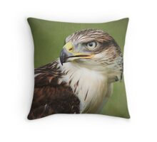Red-tailed Hawk II Throw Pillow