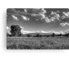 Field of Tranquility Canvas Print