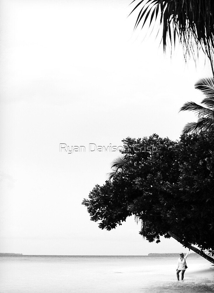 The Edge of Paradise by Ryan Davison Crisp