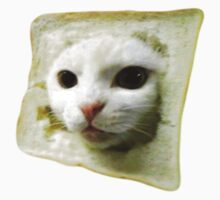 Cat with a slice of bread on the head. by aamazed