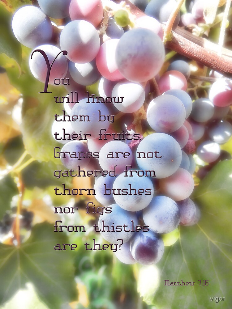 You will know them-Matthew 7:16 by vigor