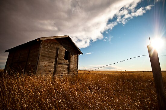 Abandoned In Rural Alberta by btpphoto