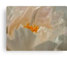 A Peak At A Peony Canvas Print