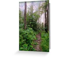 The Misty Woods Greeting Card