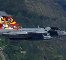 My tiger on a SAAB JAS - 39 Gripen by Karin Zeller