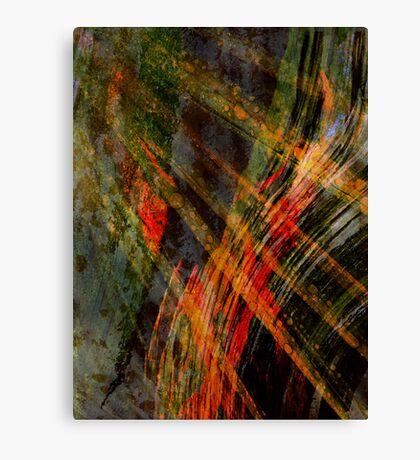 Natural Forces Canvas Print