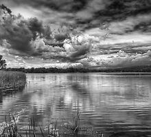 Clouds Over The Mill Pond  by Thomas Young